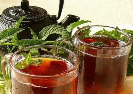мята в чае полезные свойства